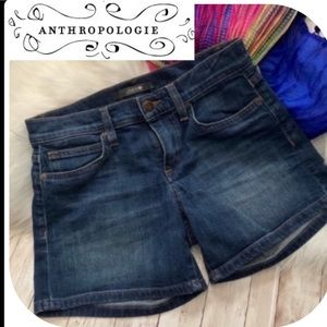 ANTHROPOLOGIE JOES JEANS MELODIE STYLE 25